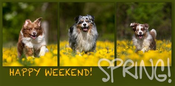 Euch allen ein schönes Wochenende!